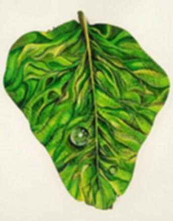 Leaf By Georgie Fergusson Oil On Log