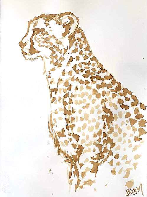 """Cheetah Stare Down"""