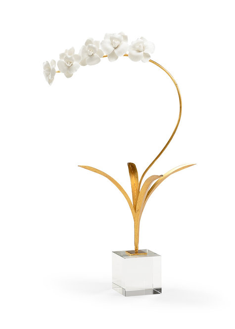 Orchid on Stand