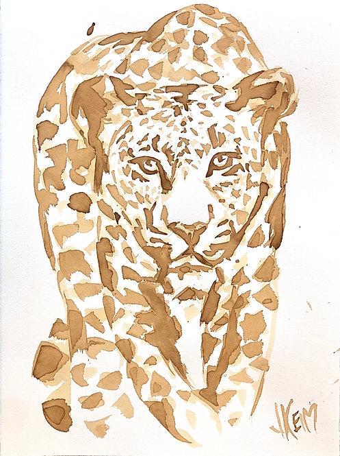 """""""Leopard Pounce"""""""