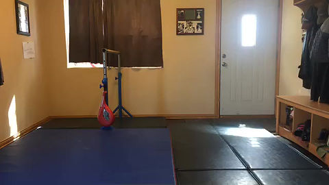 Staying In Gymnastics Shape Recap