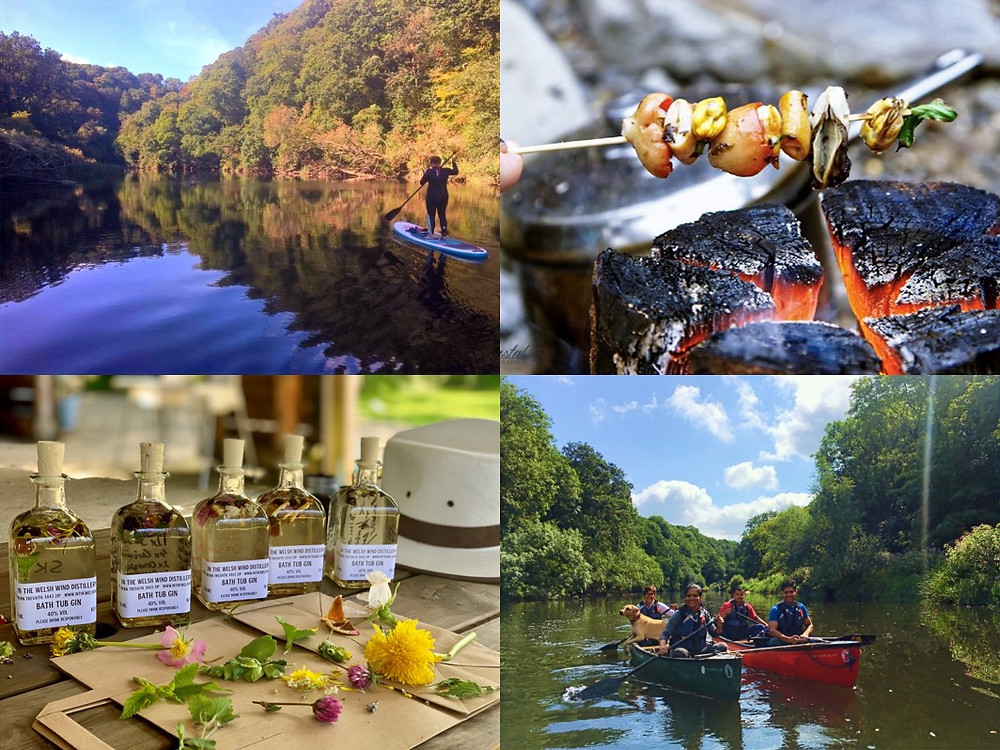 SUP Safari, Coastal Foraging, Wild Gin & Wild River Trek - Find Your Wild Weekends at Top of the Woods eco camping & glamping holidays Pembrokeshire Wales UK