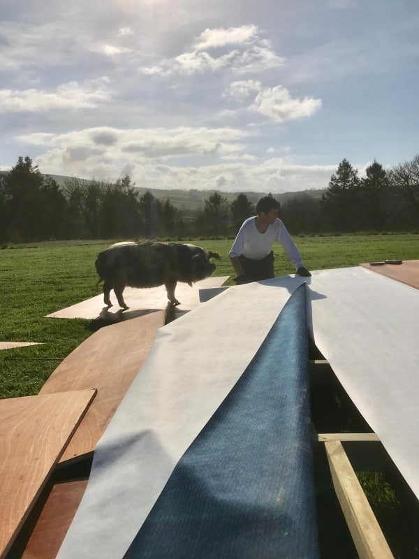 Glamping Nature Domes construction with Myrtle the pig supervising