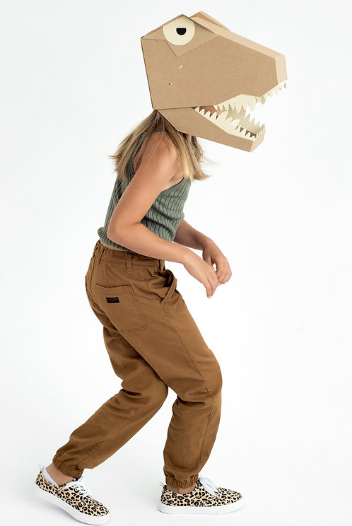DIY Kostüm T-Rex