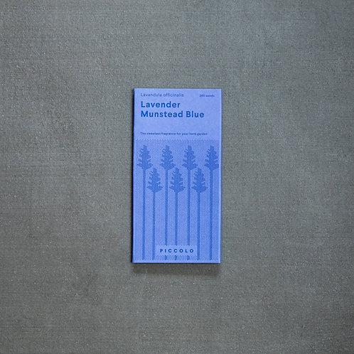 Saatgut Lavendel Munstead Blue