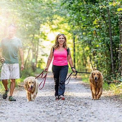 SABRINA BRUSA DOG TRAINER VARESE ISTRUTTORE RIABILITATORE COMPORTAMENTALE VARESE