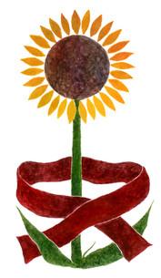 Sunflower Wearing Scarf