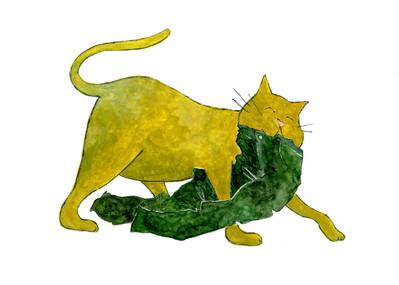 A cat I saw in a dream