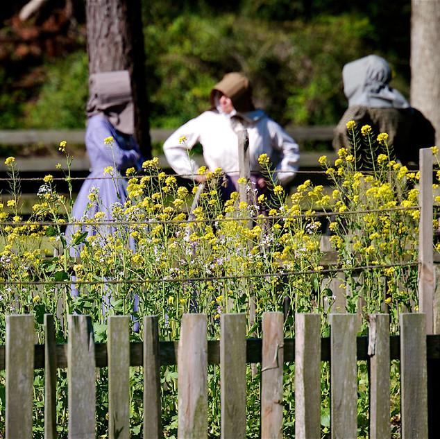 Ladies talking nearby the Garden at Island Farm.