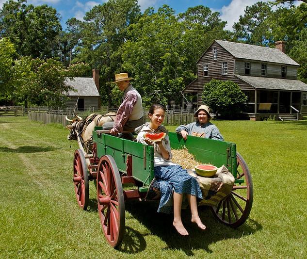 Wagon at Island Farm