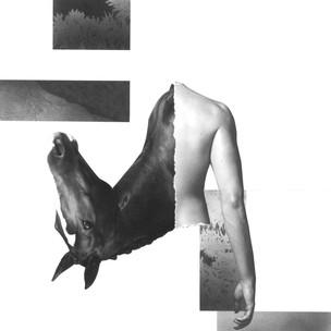 'Untitled', 2017