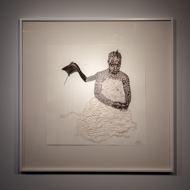'Hail Potamotrygon Leopoldi', 2020
