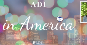 Adi in America: blog 3