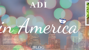 Adi in America: blog 3