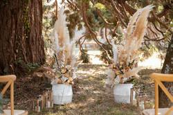 Outdoor ceremony under tree