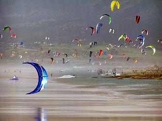 kite (9) copy.jpg