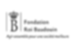 logo_fondationroibaudoin_750.png