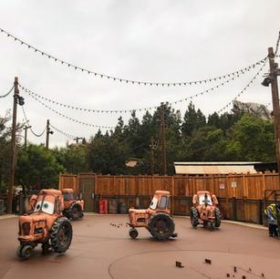 Theme Park Attraction Improvements