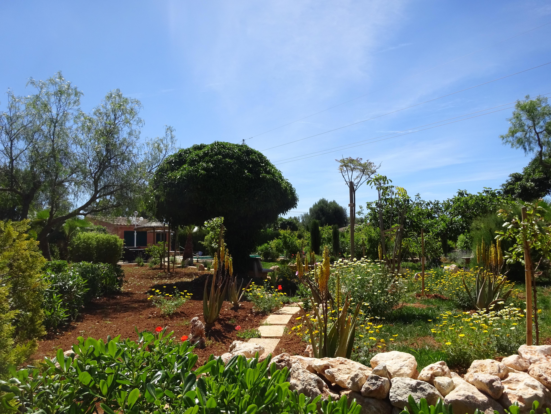 Der Garten im Frühjahr