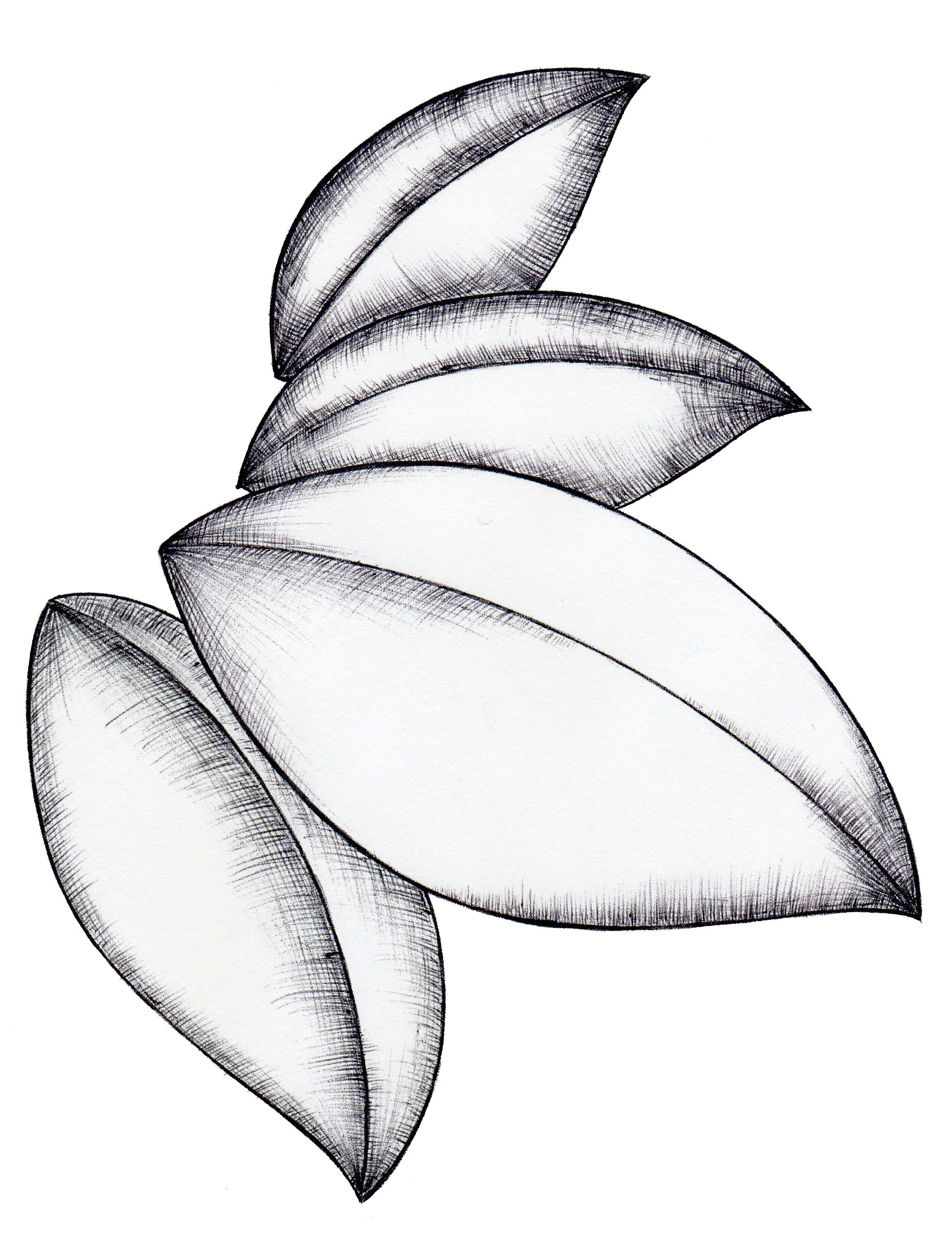リーフ(ホームページパーツ) Leaves(HP parts)