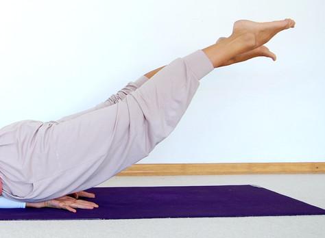 """""""Aus dem Tagebuch einer Yogalehrerin"""""""