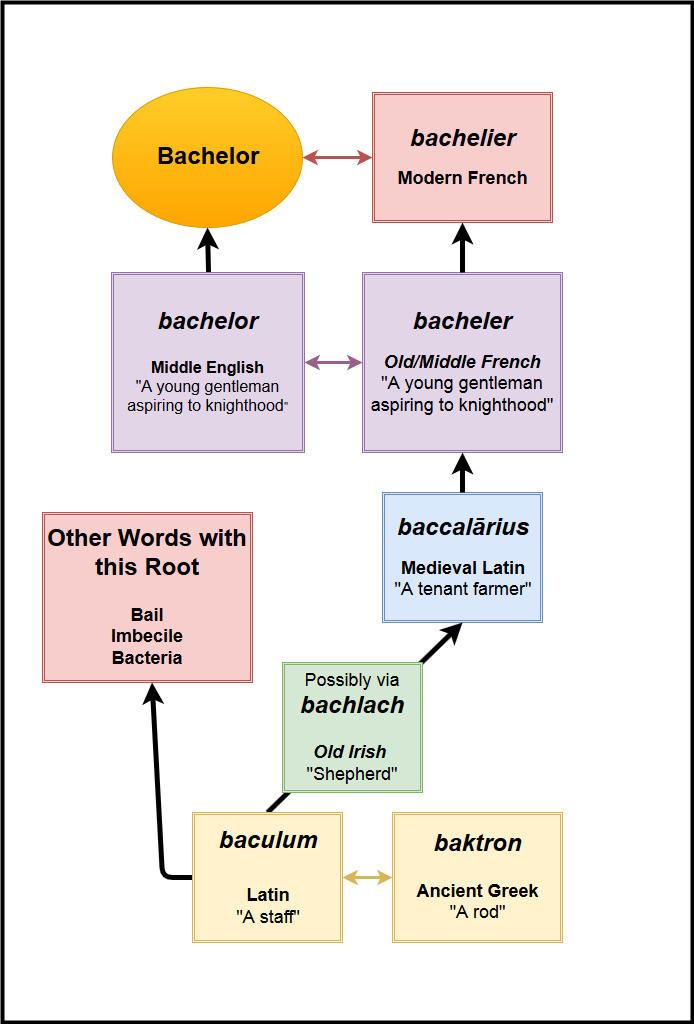 Bachelor Etymology