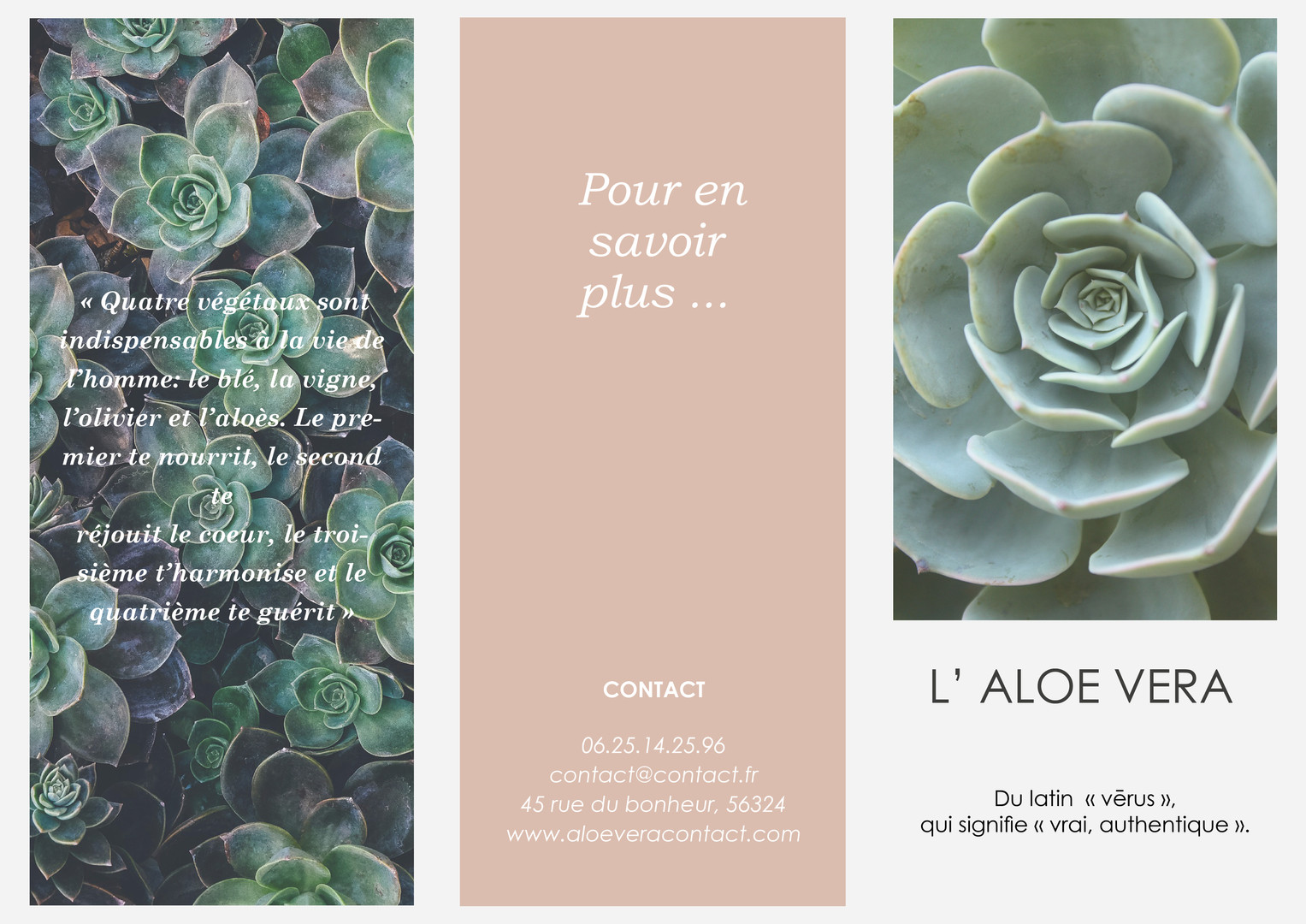 Flyer Produit Naturel