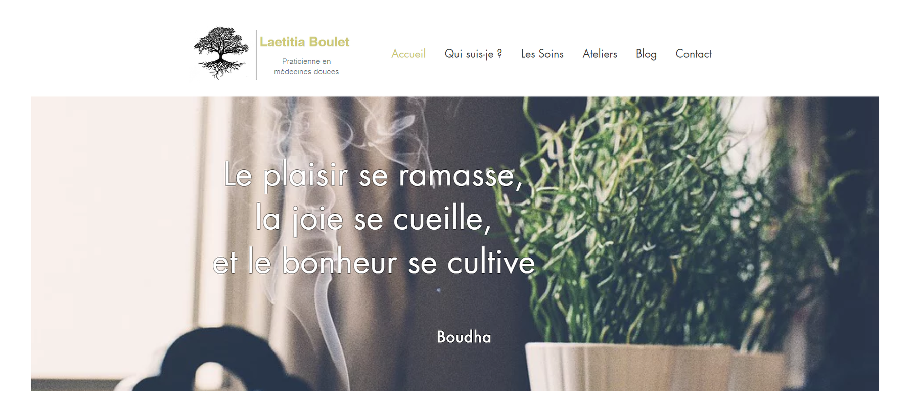 Site Internet Laetitia Boulet