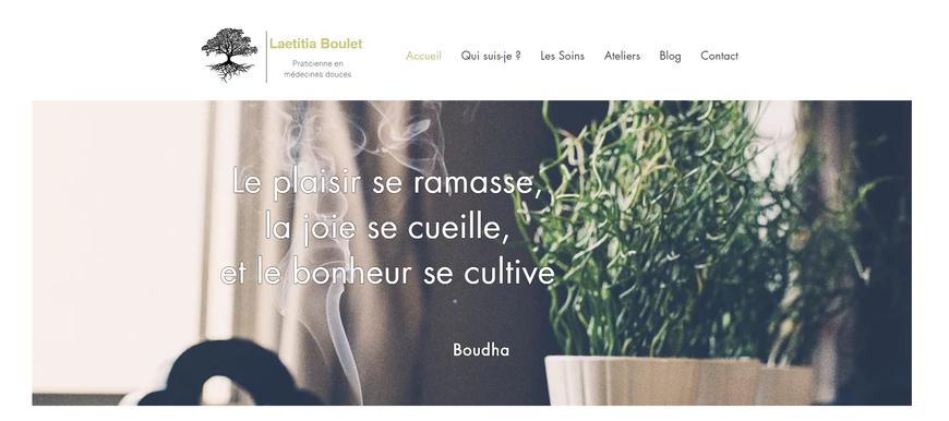 Site Internet Laetitia Boulet
