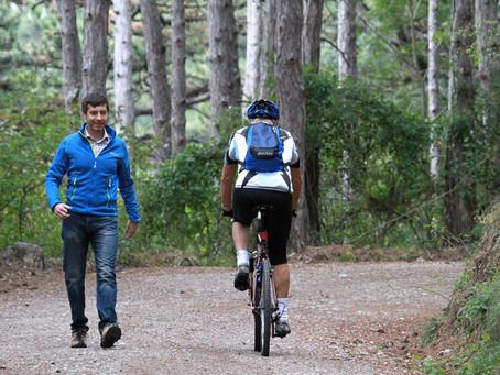 Mountainbiking und Wildtiere