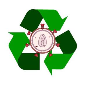 Recycling HIV