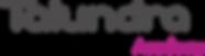 Talundra Academy-logo-dark.png