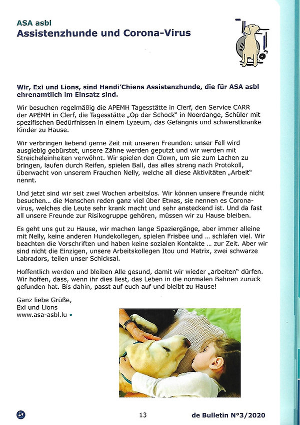 info Handicap 3_2020 (3).jpg