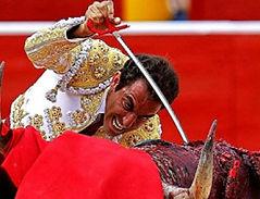 Ban bullfighting, abolición corridas de toros