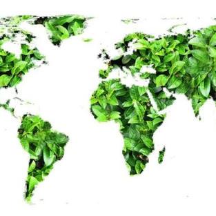 El hidrógeno verde en la transición energética.
