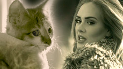Adele_Thumb (1)