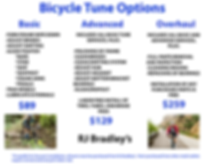 Bicycle Tune Options.png