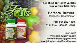 Brewer, Barbara