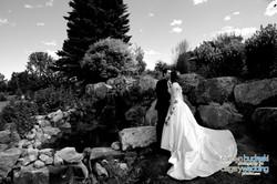 Wedding - Ben Ila-770.jpg