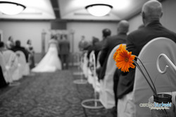Wedding - Melanie Carl-219.jpg