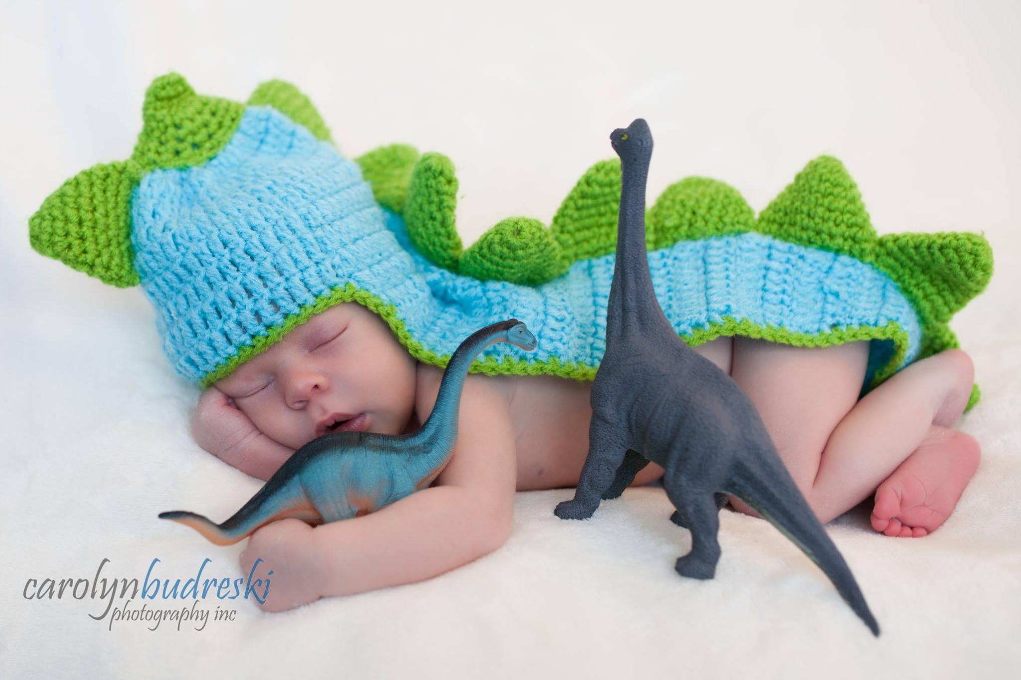 calgary newborn plus dinosaurs