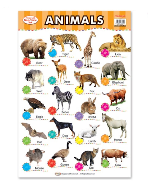 Wall Chart-Animals