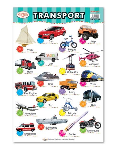 Wall Chart-Transport
