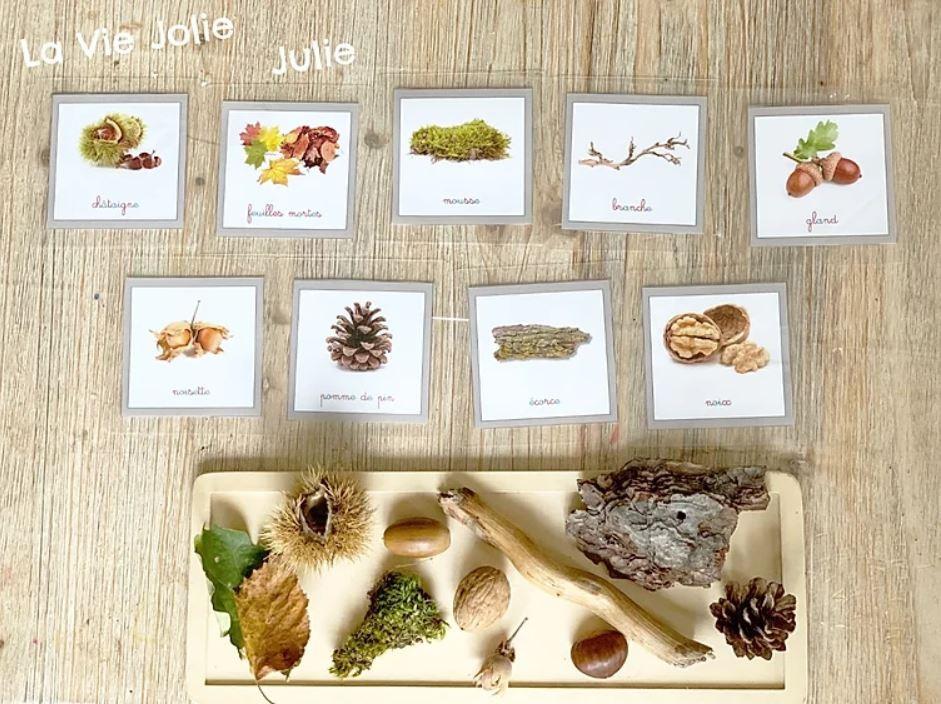 Nos trésors d'automne - Mise en paire Montessori - Activité automne