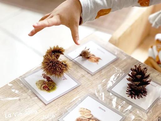 Nos trésors d'automne - Mise en paire Montessori