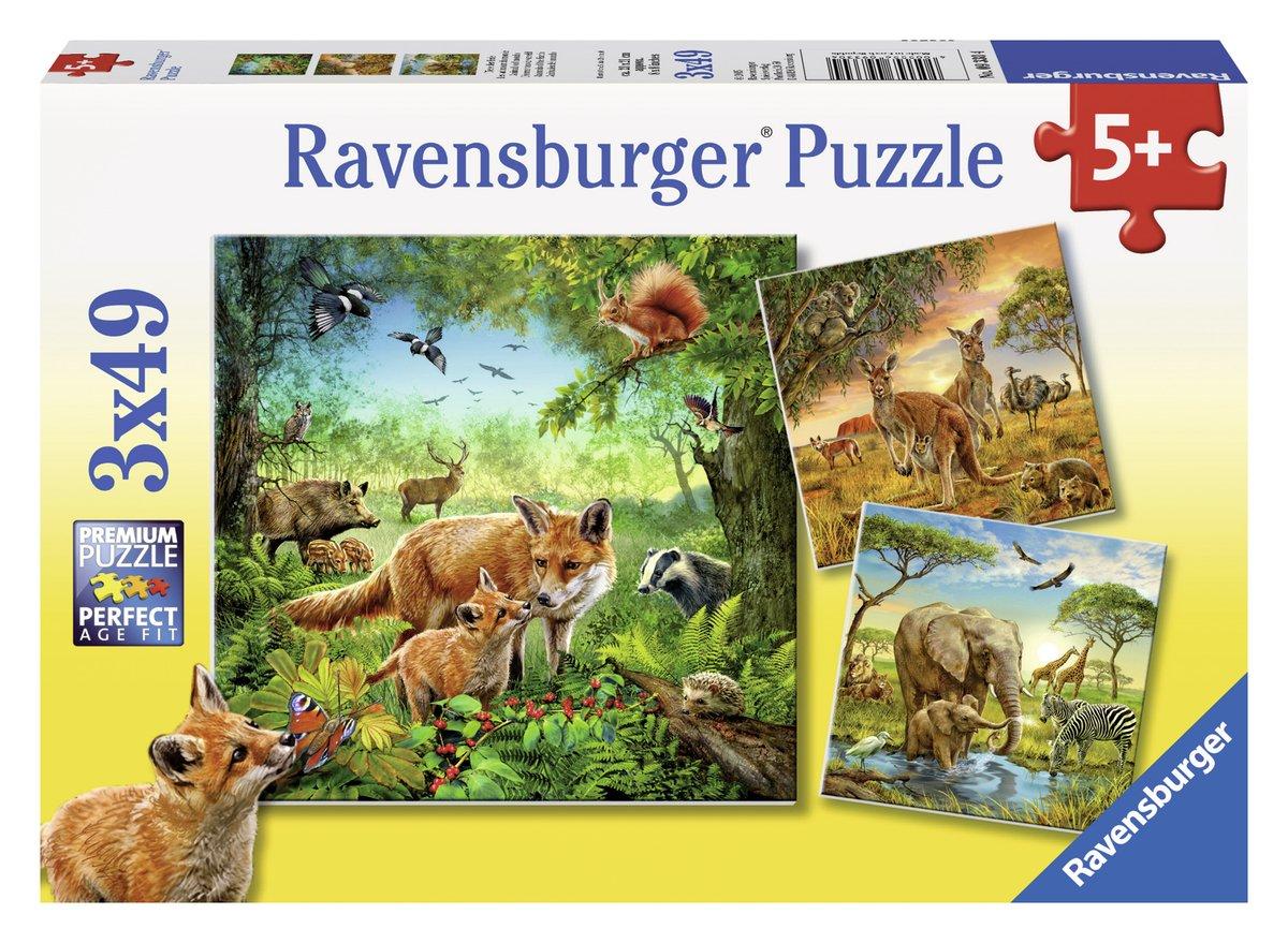 Puzzle animaux du monde