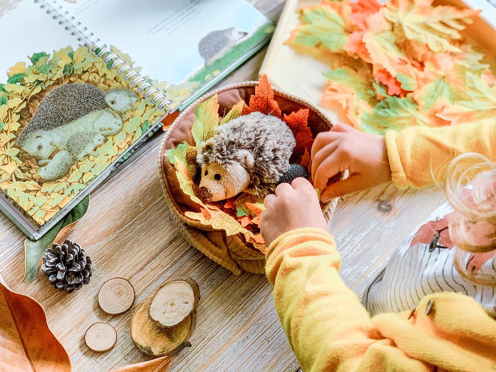 Le petit nid du hérisson - Activité Montessori