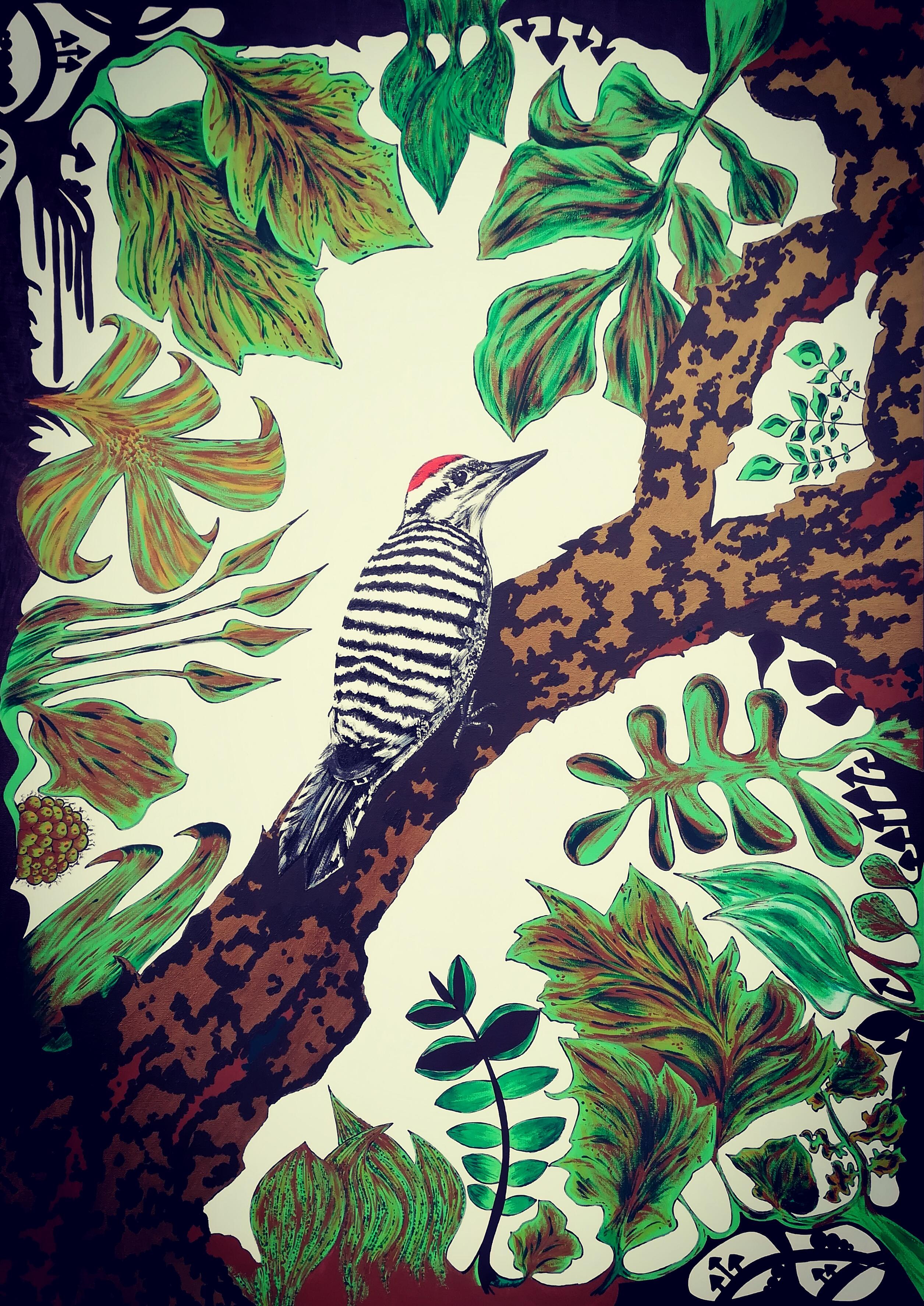 texas'woodpecker 50x70cm acrilicie panto