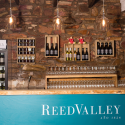 Reed Valley near Mosselbay