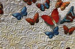 Misty butterflies